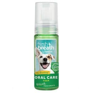 Tropiclean Oral Care Foam