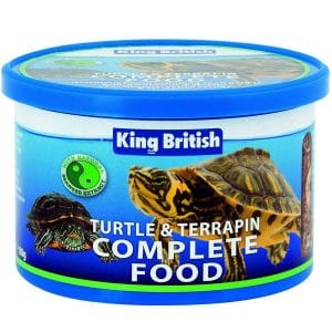 King British Turtle Terrapin Complete